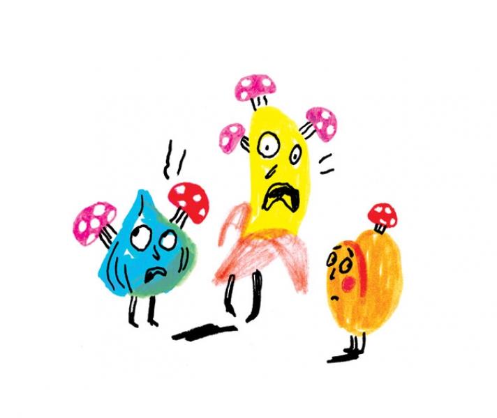 http://annevagt-illustration.com/files/gimgs/th-1_Illu2-FINAL.jpg