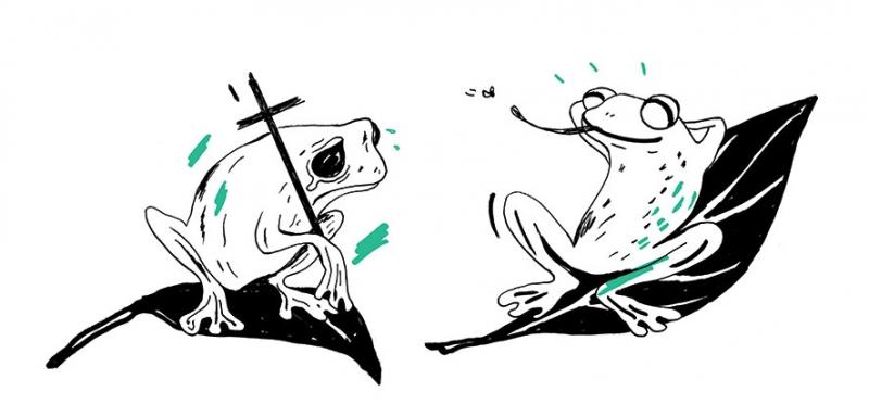 http://annevagt-illustration.com/files/gimgs/th-28_Frosch-FINAL.jpg